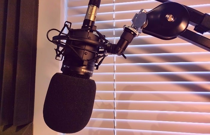 AT2020 Mic with pop filter. Photo taken in my home studio.