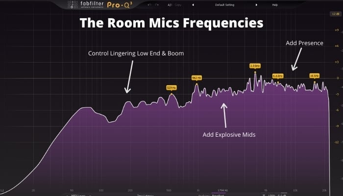 The Room Mics Frequencies
