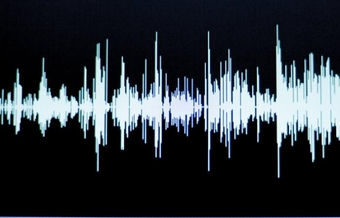 Audio Sample Wave Form