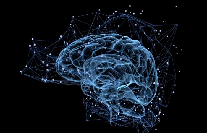 Music Has Therapeutic Effects On The Brain